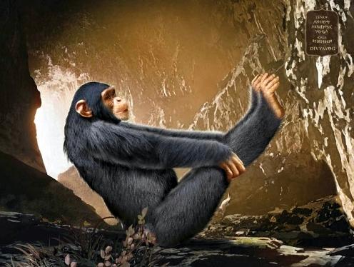 divyayog-ancient-yoga-monkey-ad3
