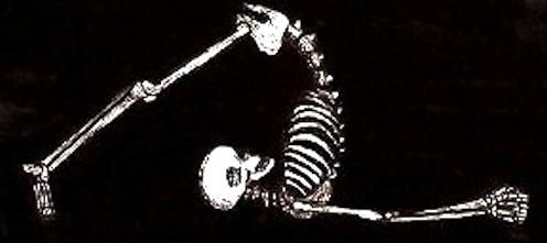 skeleton-yoga-halasana-lg