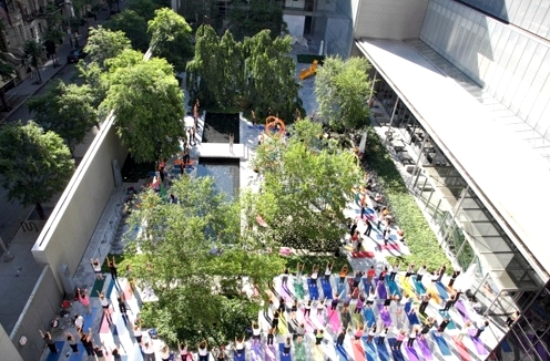 yoga-moma-elena-brower